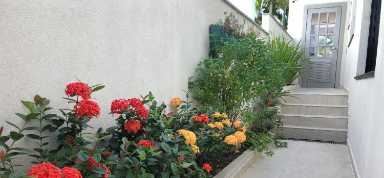 Jardines laterales: la solución para espacios reducidos